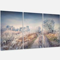 Designart - First Frost in Forest - Landscape Photography Glossy Metal Wall Art