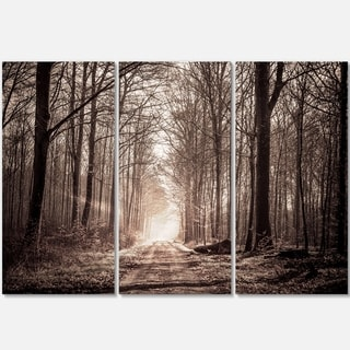 Designart - Forest Trail in Sepia - Landscape Photography Glossy Metal Wall Art