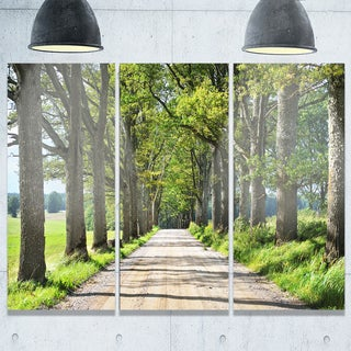 Designart - Old Road through Alley - Landscape Photography Glossy Metal Wall Art