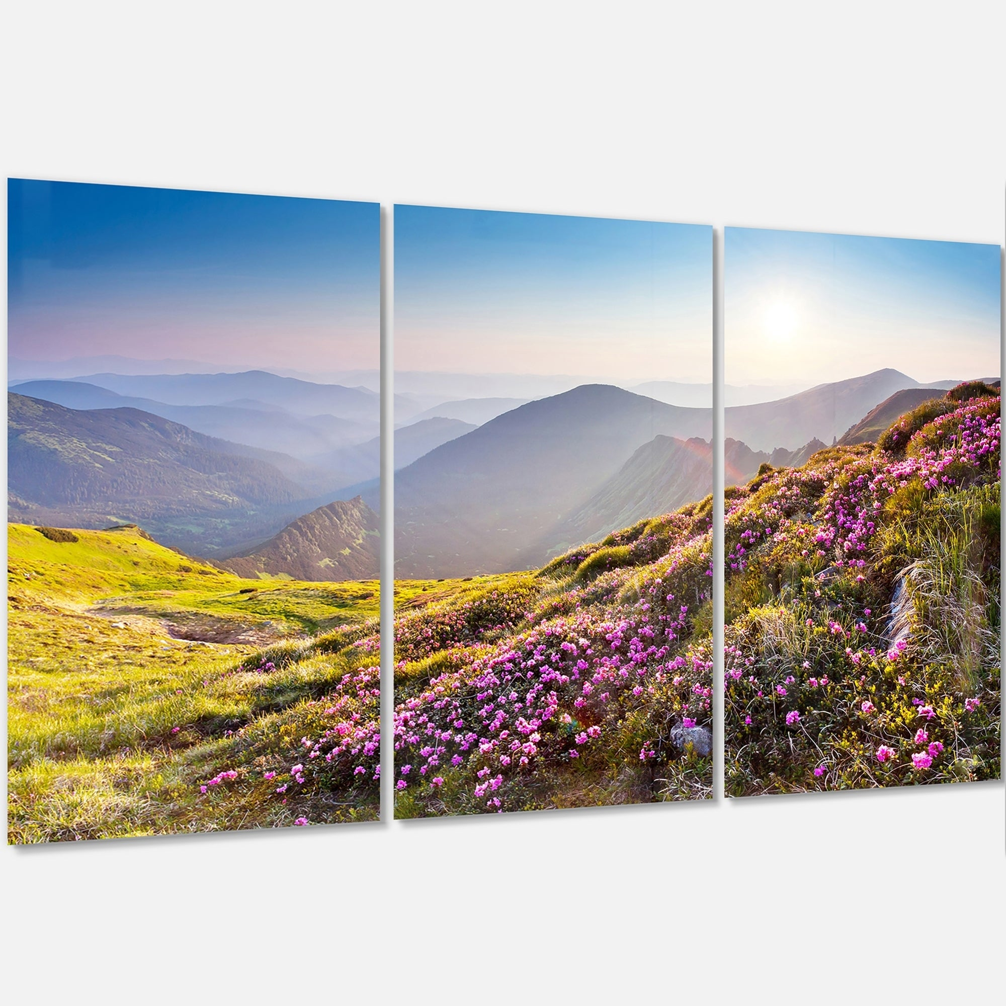 Designart Magic Pink Flowers On Mountains Landscape Photo Glossy Metal Wall Art Overstock 12697244
