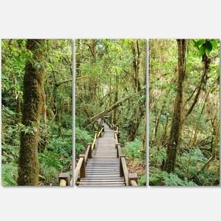 Designart - Walk Way in Deep Forest - Landscape Photo Glossy Metal Wall Art
