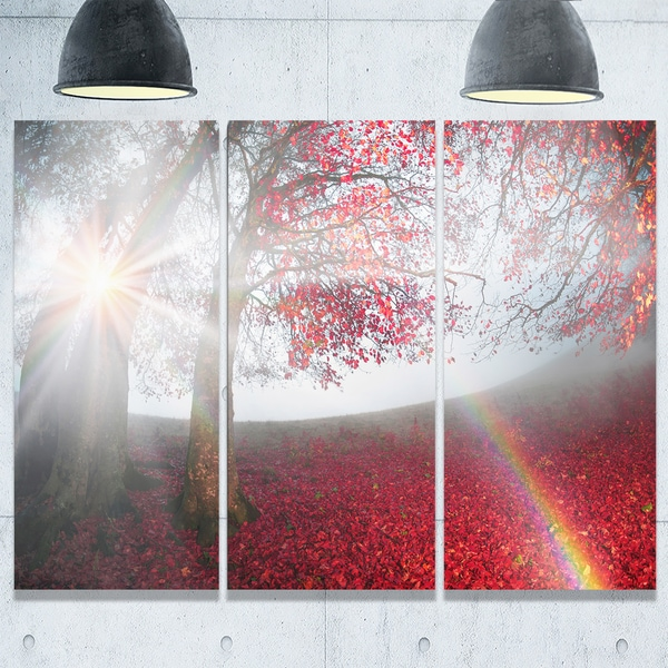 Designart - Foggy Forest After Heavy Storm - Landscape Photo Glossy Metal Wall Art
