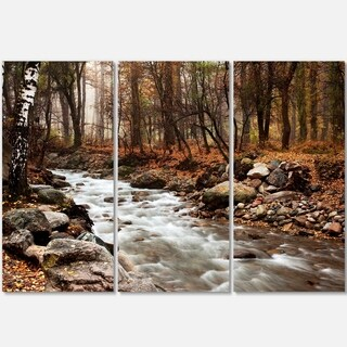 Designart - Stream in Autumn Forest - Landscape Photography Glossy Metal Wall Art