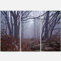 Designart - Dark Foggy Forest in Autumn - Landscape Photo Glossy Metal Wall Art