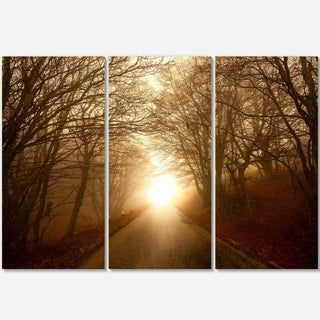Designart - Path to Sunlight in Autumn Forest - Landscape Photo Glossy Metal Wall Art