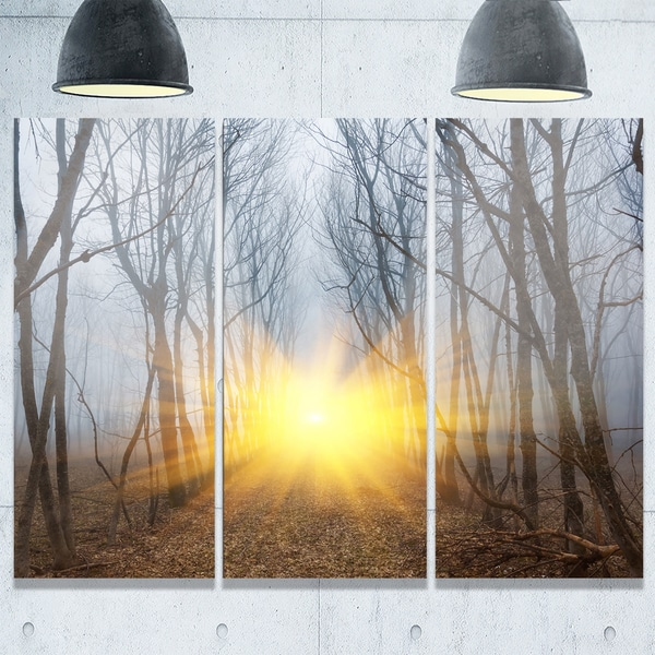 Designart - Yellow Sun Rays in Misty Forest - Landscape Photo Glossy Metal Wall Art