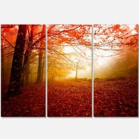 Designart - Yellow Sun Rays in Red Forest - Landscape Photo Glossy Metal Wall Art
