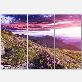 Designart - Rhododendron Flowers in Hills - Landscape Photo Glossy Metal Wall Art