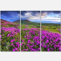 Designart - Rhododendron Flowers in Mountains - Landscape Photo Glossy Metal Wall Art