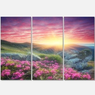 Designart - Morning with Flowers in Mountains - Landscape Photo Glossy Metal Wall Art