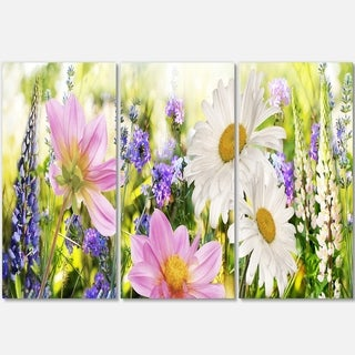 Designart - Wild Flowers Field at Sunset - Floral Photography Glossy Metal Wall Art