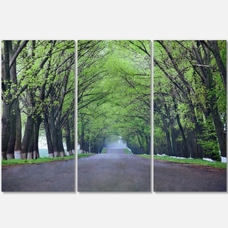 Designart - Arched Trees Over Country Road - Landscape Photo Glossy Metal Wall Art