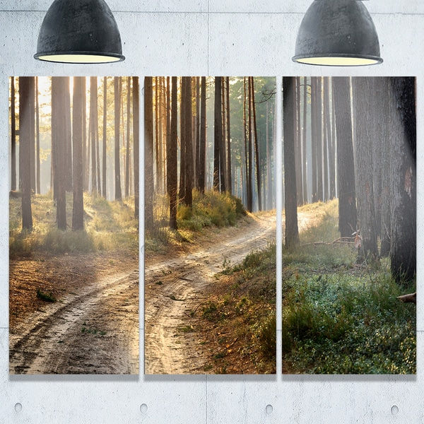 Designart - Road in Thick Morning Forest - Landscape Photo Glossy Metal Wall Art - 36 in. wide x 28 in. high - 3 panels