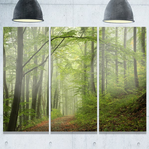 Designart - Early Green Fall Forest - Landscape Photo Glossy Metal Wall Art