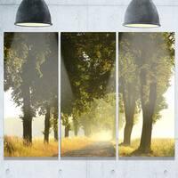 Designart - Country Road Below Green Trees - Landscape Photo Glossy Metal Wall Art