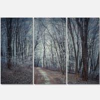 Designart - Dense Gray Fall Forest Path - Landscape Photo Glossy Metal Wall Art