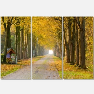 Designart - Country Road Below Yellow Trees - Landscape Photo Glossy Metal Wall Art