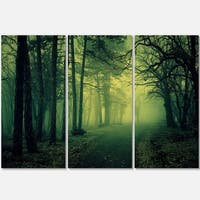 Designart - Green Light in Thick Mist Forest - Landscape Photo Glossy Metal Wall Art