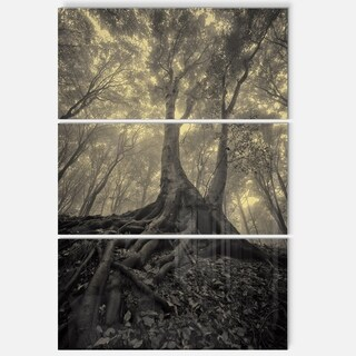 Designart - Tree with Big Roots on Halloween - Landscape Photo Glossy Metal Wall Art