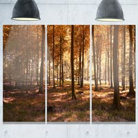 Designart - Thick Fall Forest with Orange Leaves - Landscape Photo Glossy Metal Wall Art