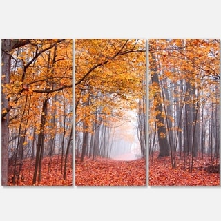 Designart - Beautiful Trees with Fallen Leaves - Landscape Photo Glossy Metal Wall Art
