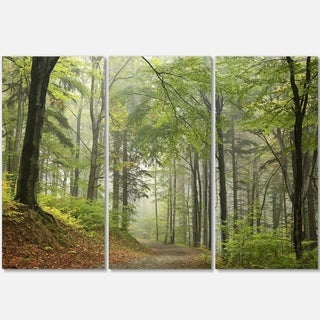 Designart - Green Beach Forest Pathway - Landscape Photo Glossy Metal Wall Art