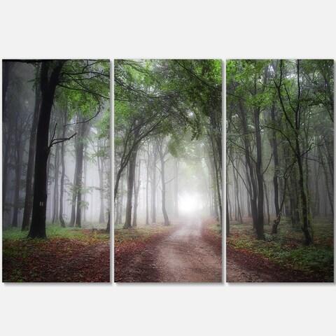 Designart - Light Through Green Fall Forest - Landscape Photo Glossy Metal Wall Art