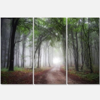 Designart - Light Through Green Fall Forest - Landscape Photo Glossy Metal Wall Art