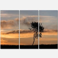 Designart - Lonely Tree Silhouette Rightwards - Landscape Glossy Metal Wall Art
