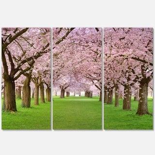 Designart - Stunning Cherry Blossoms Plenitude - Landscape Glossy Metal Wall Art
