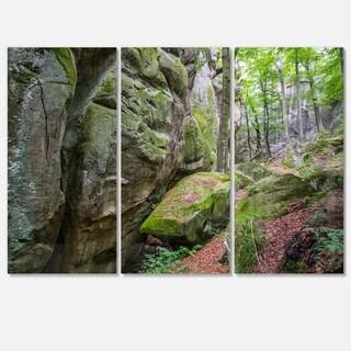 Designart - Wild Deep Moss Forest Ukraine - Landscape Glossy Metal Wall Art