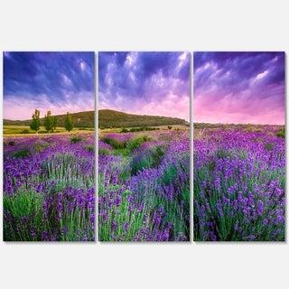 Designart - Summer Lavender Field in Tihany - Modern Landscape Glossy Metal Wall Art