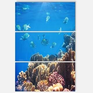 Designart - Bright Blue Waters and Coral Fish - Large Seashore Glossy Metal Wall Art