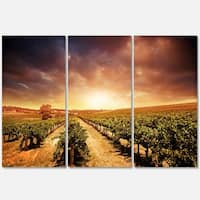 Designart - Vineyard with Stormy Sunset - Extra Large Glossy Metal Wall Art Landscape