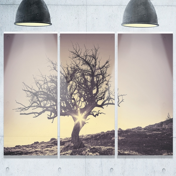 Designart - Lonely Grey Tree in Mountain - Extra Large Glossy Metal Wall Art Landscape