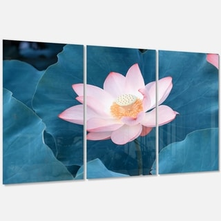 Designart - Blooming Pink Lotus Flower - Oversized Beach Glossy Metal Wall Art