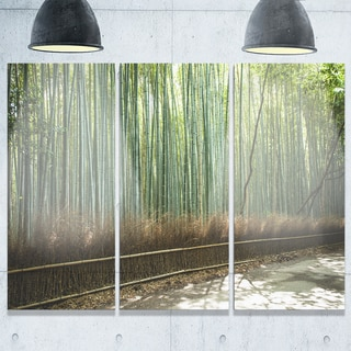 Designart - Beautiful View of Bamboo Forest - Forest Glossy Metal Wall Art
