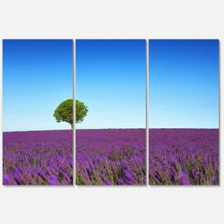 Designart - Green Tree among Lavender Flowers - Oversized Landscape Glossy Metal Wall Art