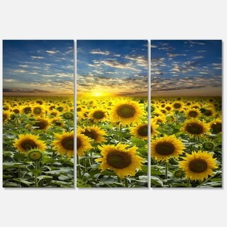 Designart - Field of Blooming Sunflowers - Large Flower Glossy Metal Wall Art