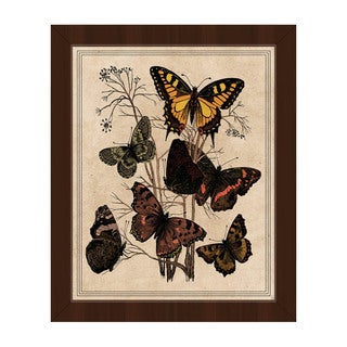 'Butterfly Drawing' Multicolored Framed Canvas Wall Art