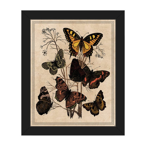'Butterfly Drawing' Framed Canvas Wall Art