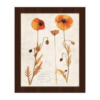 'Dry Poppy' Framed Canvas Wall Art