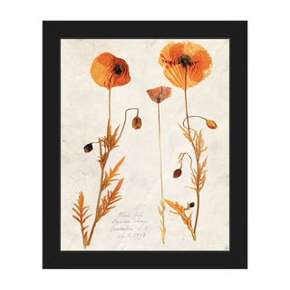 'Dry Poppy' Abstract Framed Canvas Wall Art