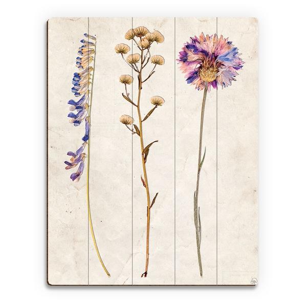 '3 Dry Flowers' VP Wood Wall Art