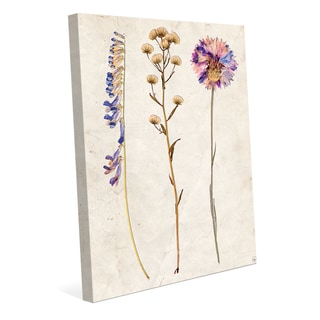 '3 Dry Flowers VP' Gallery-wrapped Canvas Wall Art