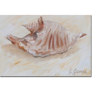 WGI Gallery 'Sea Shell #3' Wall Art Printed on Wood