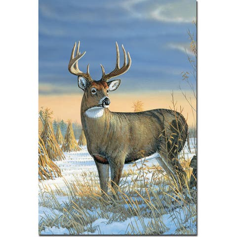 WGI Gallery 'Whitetail Deer in Winter' Wall Art Printed on Wood