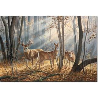 WGI Gallery 'Woodland Splendor' Wall Art Printed on Wood