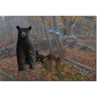 WGI Gallery 'Stonewall Black Bear' Wall Art Printed on Wood