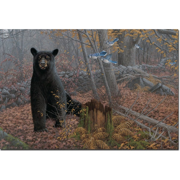 WGI Gallery \'Stonewall Black Bear\' Wall Art Printed on Wood - Free ...